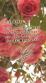 歌詞画像 Vol.35
