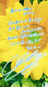 歌詞画像 Vol.98